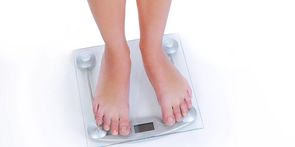 体脂肪の役割